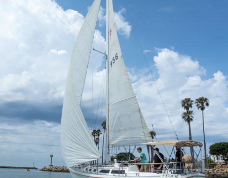 Year-Round Sailing
